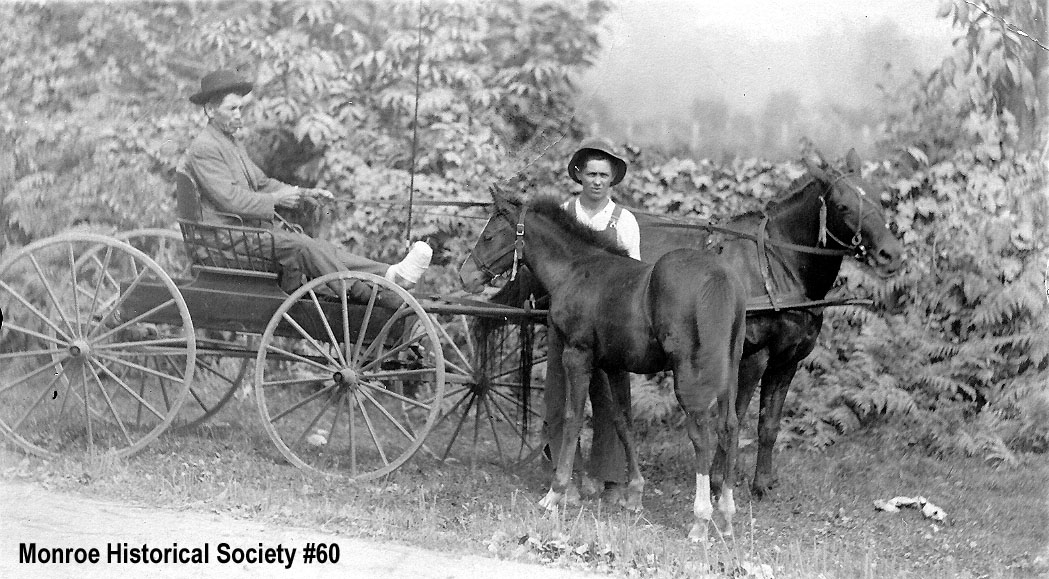 0060 – John Johnson in a horse buggy with Homer Dennis standing with a colt
