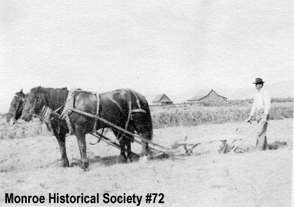 0072 – George Johnson plowing in the Tualco Valley with black horse