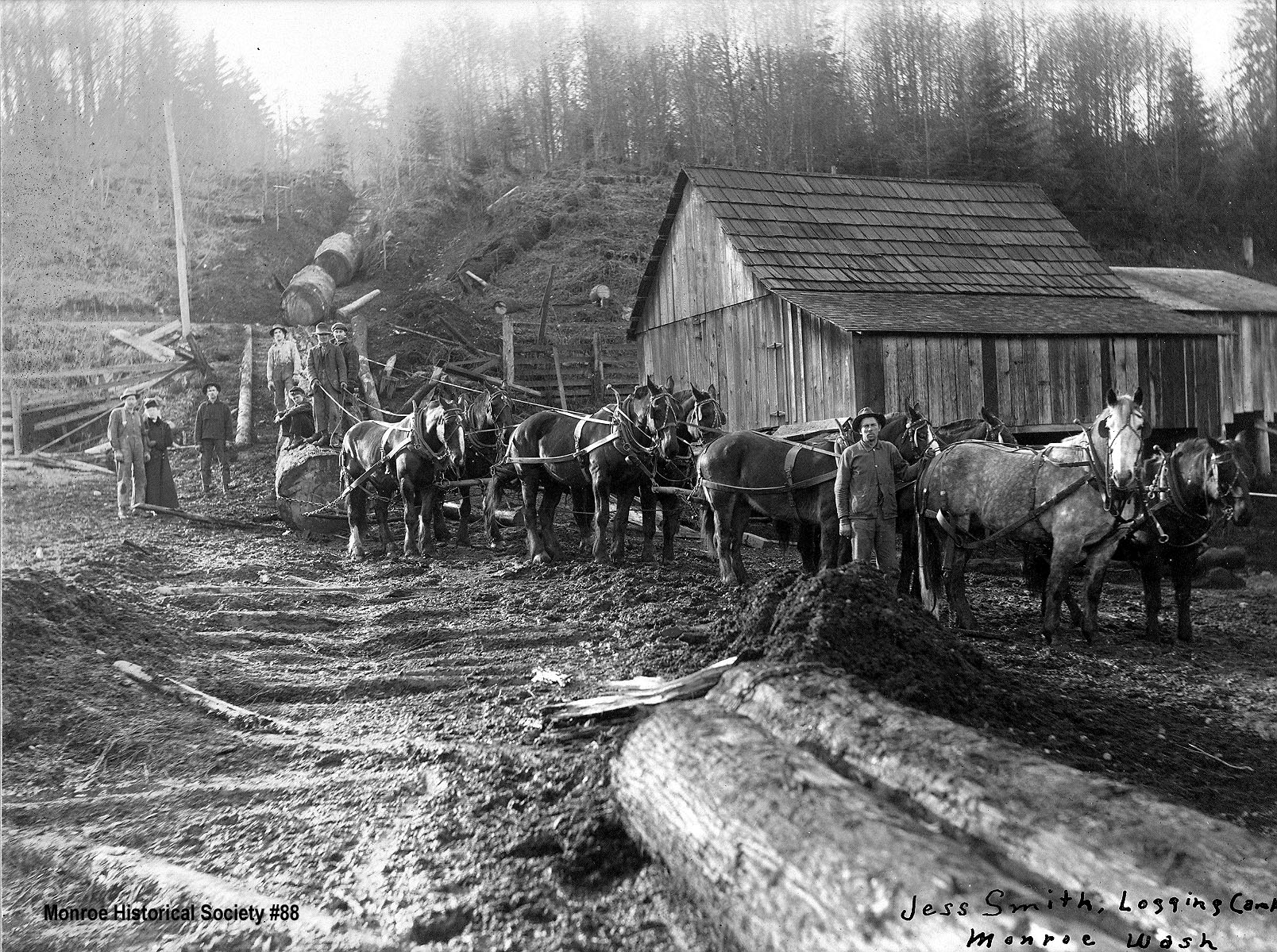 0088 – Jess Smith Logging Camp south of Monroe in 1915 with horse team and skid row