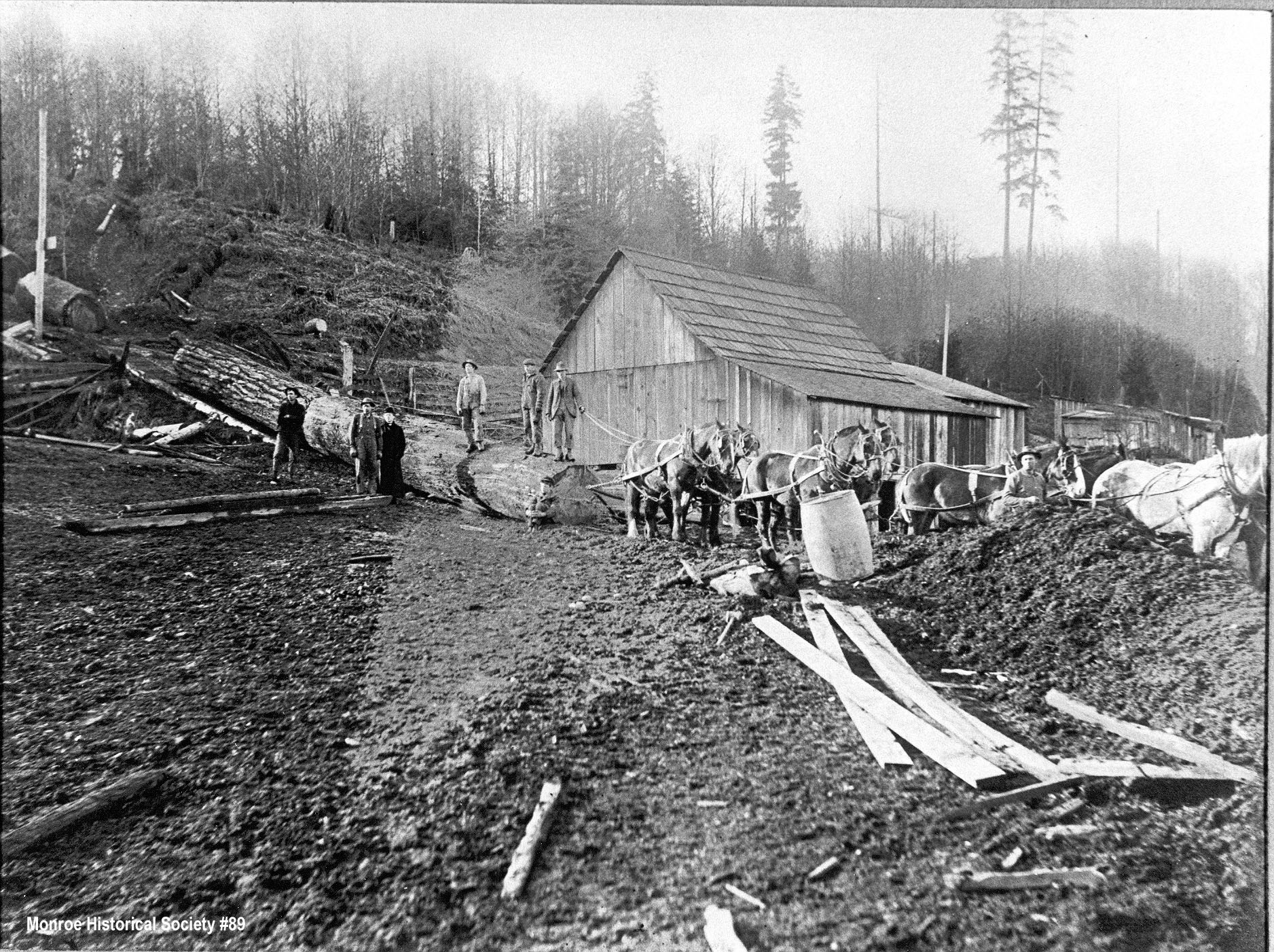 0089 – Jess Smith Logging Camp south of Monroe about 1915 with horse team and skid row